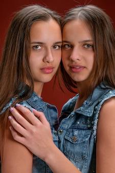 Porträt von zwei schönen jungen zwillingsfrauen