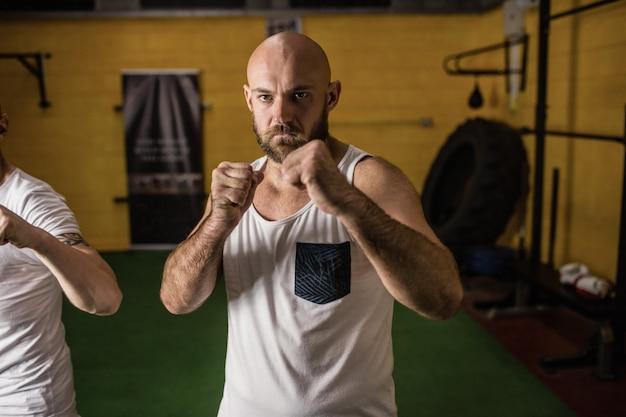 Porträt von zwei stehenden boxern