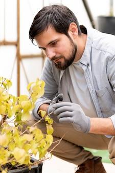 Porträtmann, der pflanzen wächst