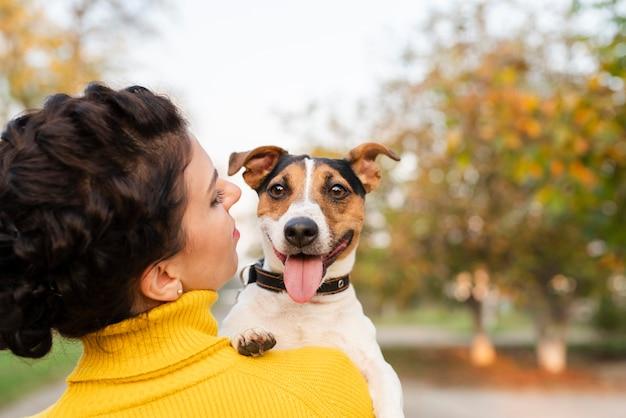Portrait des schönen kleinen hundes