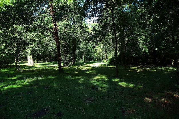 Potsdamer park und gärten, berlin, deutschland