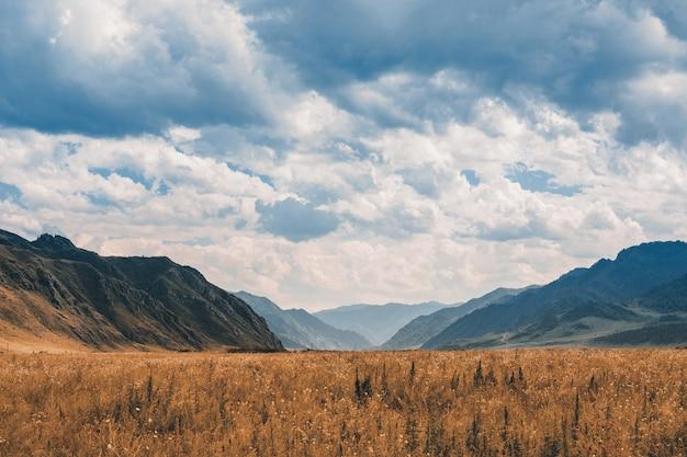Prärie zwischen den bergen.