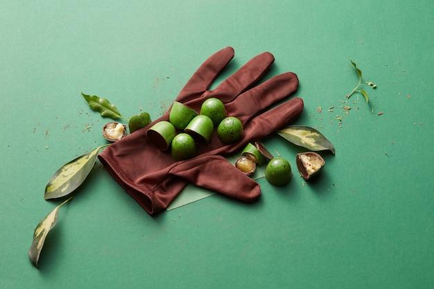 Pralinen auf dem handschuh und blätter auf einem grünen tisch Premium Fotos