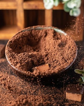Pralinen-trüffel in kakaopulver natürliche dessert-süßigkeiten mahlzeit snack auf dem tisch kopie raum