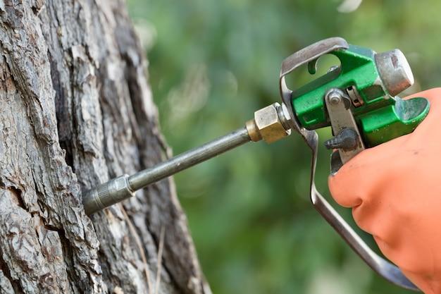 Professionelle injektionsmaschine in der hand des bedieners, für bäume, schädlingsbekämpfung,