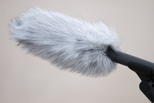 Professionelles mikrofon mit windschutz