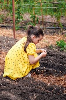 Profilporträt eines kindes, das pflanzen pflanzt das kind hilft eltern und lernt, gemüse zu pflanzen ...