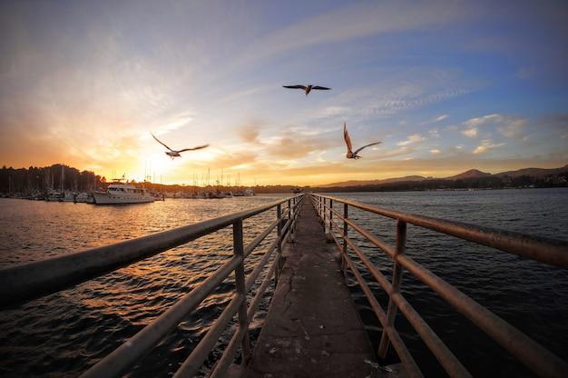 Promenade über dem malerischen see und vögel, die im sonnenuntergangshimmel schweben