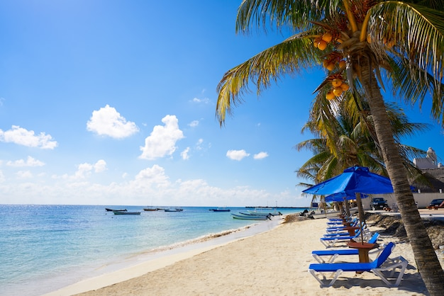 Puerto morelos strand in der riviera maya
