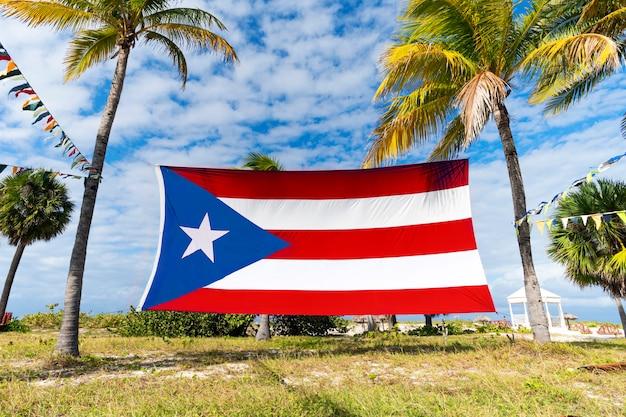 Puerto-rico-flagge unter palmen. puerto-ricanische flagge gegen tropische palmen und blauen himmel. schöne tropische landschaft im hintergrund.