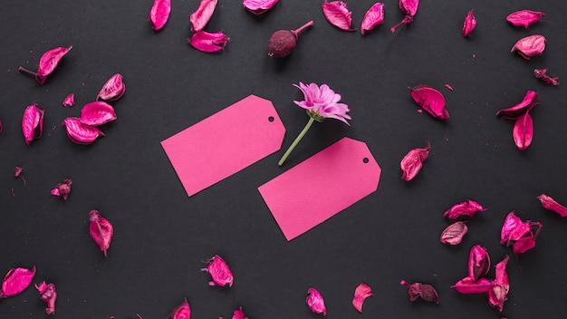 Purpurrote blume mit kleinen papieren auf tabelle