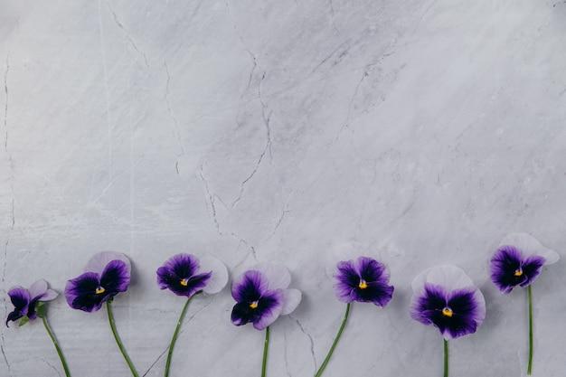 Purpurrote blumen auf einem marmorhintergrund