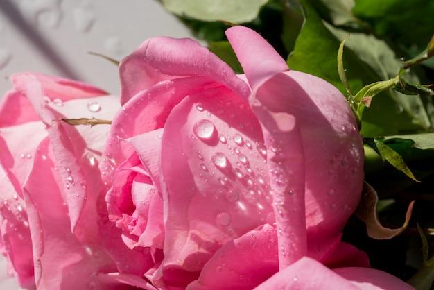 Purpurrote rosen in einer hochzeitsanordnung