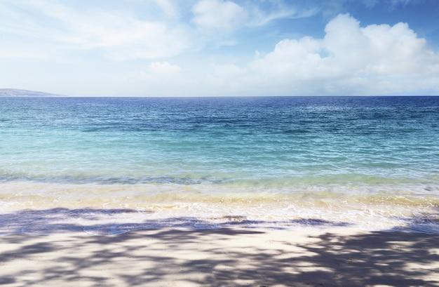 Puru kambera strand auf sumba island, indonesien