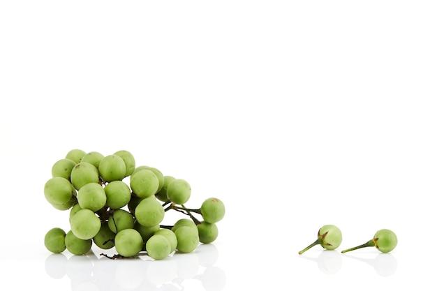 Putenbeere oder erbsen-aubergine oder solanum torvum isoliert auf weißer oberfläche