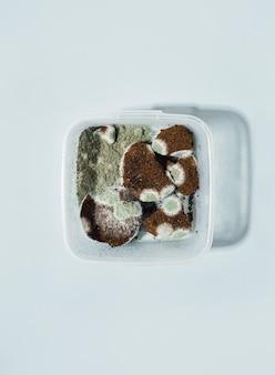 Quadratischer kunststoffbehälter mit schimmel und schmutz im kaffee auf blauem hintergrund. trendiger harter schatten. horizontal