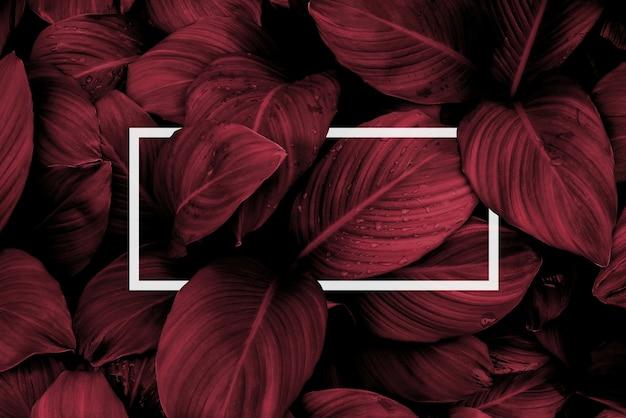 Quadratischer rahmen kreatives layout aus tropischen blumen und blättern mit papierkartennotiz flache lay