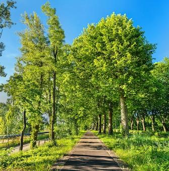 Radweg entlang der rhone - rheinkanal in der nähe von straßburg im elsass, frankreich