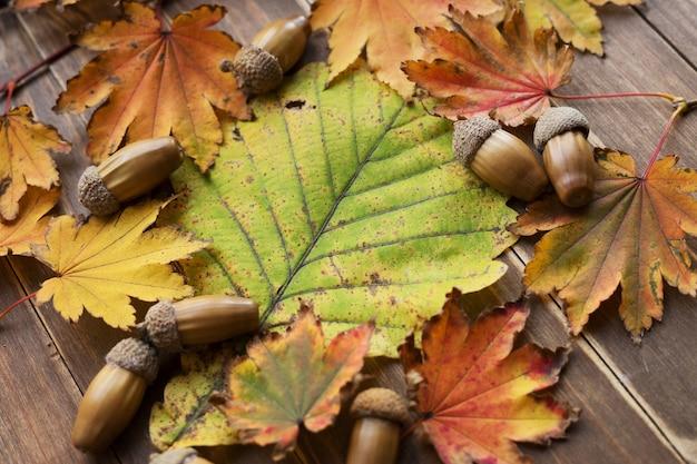Rahmen aus herbstahornlaub und eicheln auf eichenblatthintergrund mit kopierraum.