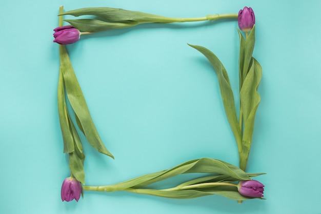 Rahmen aus lila tulpen auf dem tisch
