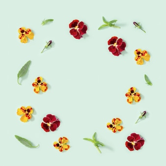 Rahmen aus natürlichen blütenblüten herzkrankheit und frischen blättern auf hellgrün