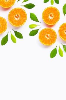 Rahmen aus orangen mit grünen blättern