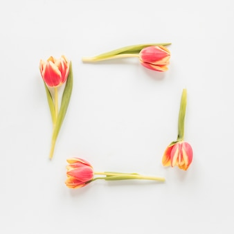 Rahmen aus roten tulpen auf dem tisch