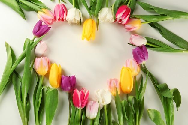 Rahmen aus schönen tulpen auf weißem hintergrund