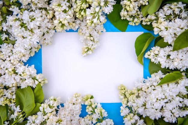 Rahmen der zweige des schönen weißen flieders des persischen terry auf einem blauen hintergrund, kopienraum