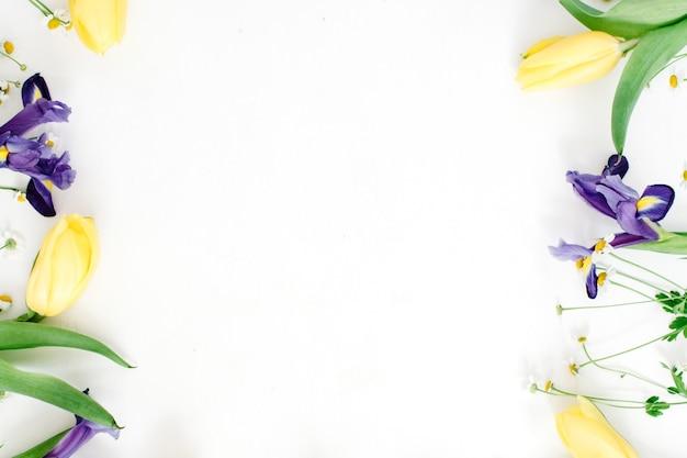 Rahmen mit gelben tulpen, lila iris und kamillenblüten auf weißem hintergrund. flache lage, ansicht von oben. blumenhintergrund