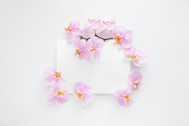 Rahmen mit lila orchideenblumen und grenze auf einem weißen hintergrund