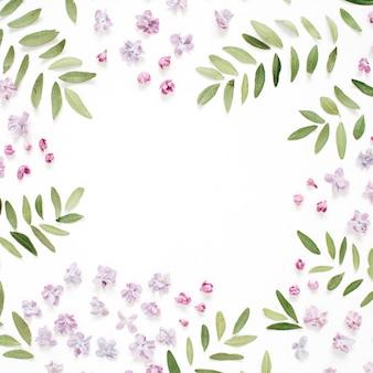 Rahmen von lila blütenblättern, grüne blätter auf weiß
