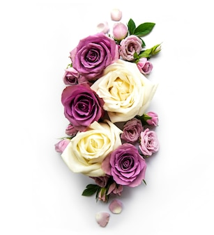 Rahmen von rosen auf weißem hintergrund.