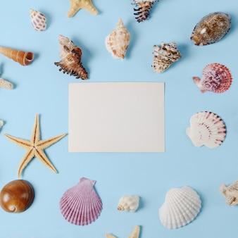Rahmen von vielen verschiedenen muscheln auf einem blauen hintergrund. thematische kulisse am meer für reisebüro-vorlagenwerbung oder postkarte. draufsicht vintage getöntes stillleben.