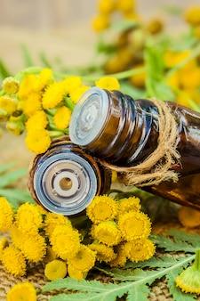 Rainfarn medizinischer extrakt, tinktur, sud, öl, in einer kleinen flasche.