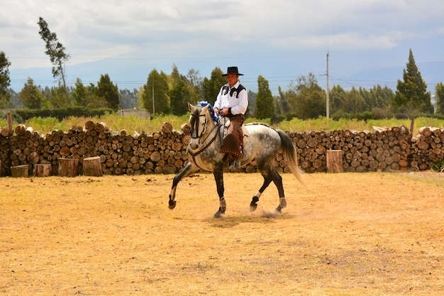 Rancho fenix, latacunga, cotopaxi, ecuador 12. august 2016. reiter in der dressur