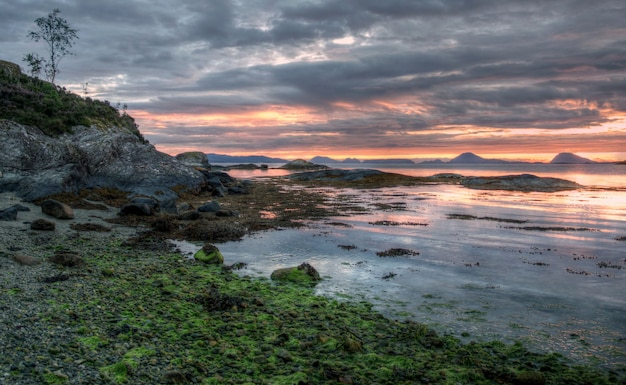 Raue natur in der norwegischen landschaft im sommer