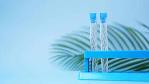 Reagenzgläser auf dem ständer auf blauem grund. tropisches blatt. forschungskonzept tropenkrankheiten