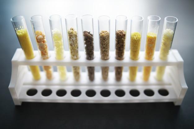 Reagenzgläser mit samen von selektionspflanzen. forschung zur analyse von landwirtschaftlichem getreide und saatgut im labor