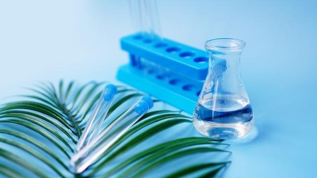 Reagenzgläser und eine chemische flasche auf blauem grund. tropisches blatt. forschungskonzept tropenkrankheiten