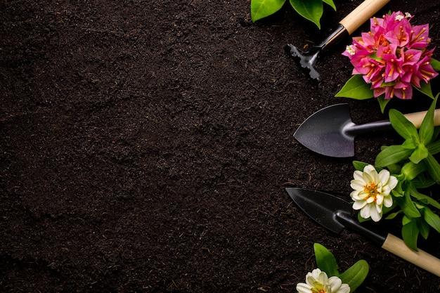 Rechen und spaten, die werkzeuge mit draufsichthintergrund verpflanzen.