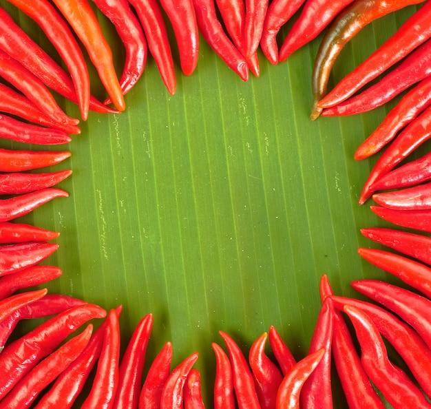 Red hot chili arrangiert als kreis auf bananenblatt
