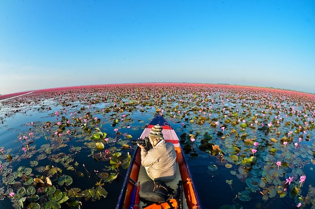 Red lotus sea bei sonnenlicht sonnenaufgang mit schönem himmel in udon thanithailand lotus lake concept