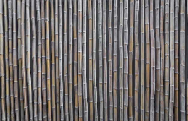 Reed wand