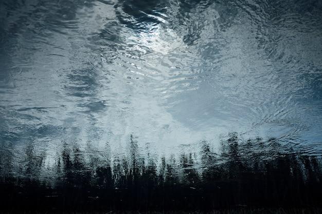 Reflexion von bäumen im teich
