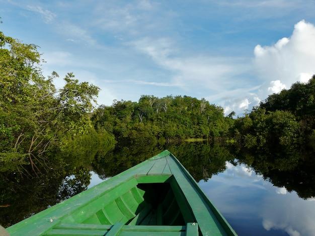Reflexionen des amazonas, brasilien
