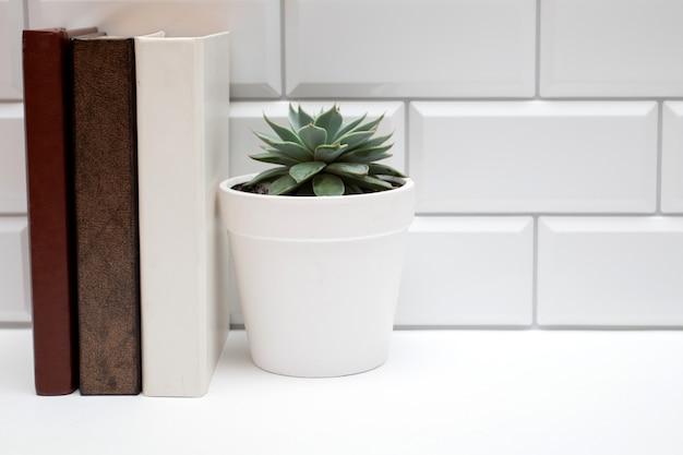 Regal mit büchern und saftig auf weißer backsteinmauer.