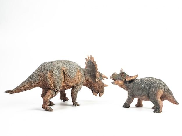 Regaliceratops-dinosaurier auf weißem hintergrund