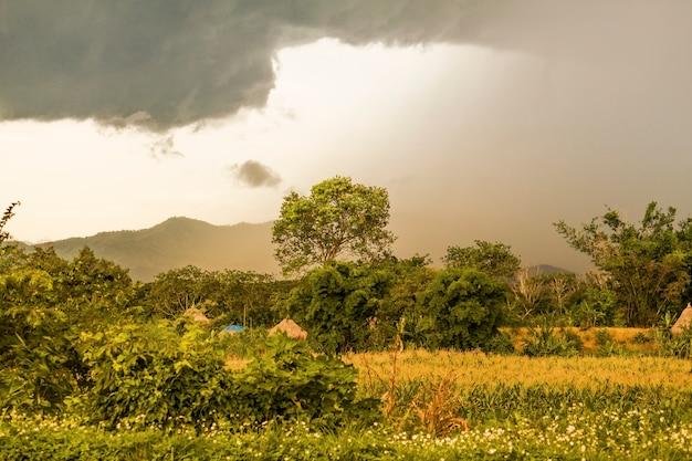Regen kommt auf die farm
