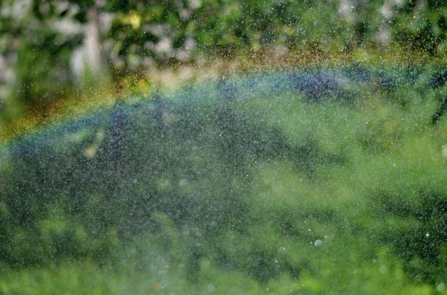 Regenbogeneffekt